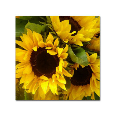 jcpenney.com | Sunflowers Canvas Wall Art