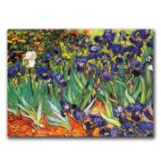 Irises at Saint-Remy Canvas Wall Art