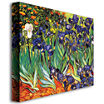 Irises at Saint-Remy Canvas Wall Art