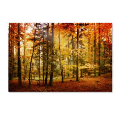 jcpenney.com | Brilliant Fall Color Canvas Wall Art