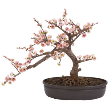 jcpenney.com | Nearly Natural Cherry Blossom Bonsai Silk Tree