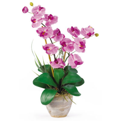 Nearly natural double phalaenopsis silk orchid flower arrangement nearly natural double phalaenopsis silk orchid flower arrangement mightylinksfo