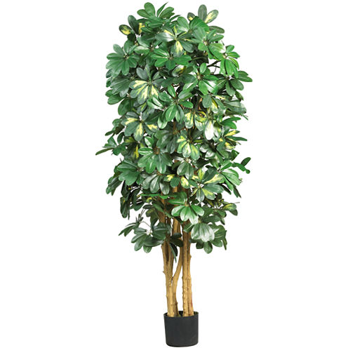 Nearly Natural 5-ft. Schefflera Silk Tree