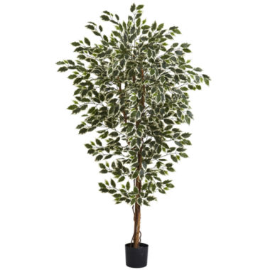 jcpenney.com | Nearly Natural 6-ft. Hawaiian Ficus Tree