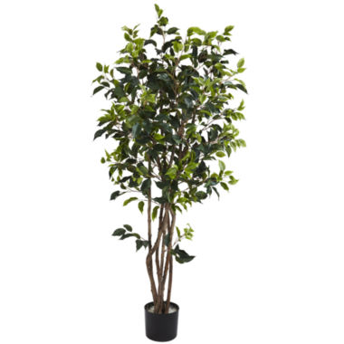 jcpenney.com | 5' Ficus Bushy Silk Tree
