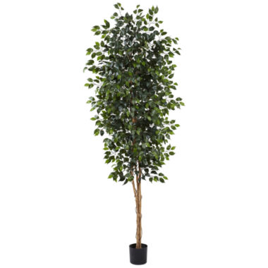 jcpenney.com | Nearly Natural 8-ft. Ficus Tree