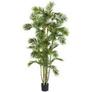 6' Areca Palm Silk Tree