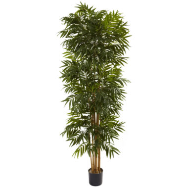 jcpenney.com | 7.5' Phoenix Palm Tree