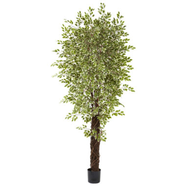 jcpenney.com | Nearly Natural 7.5-ft. Variegated Mini Ficus Tree