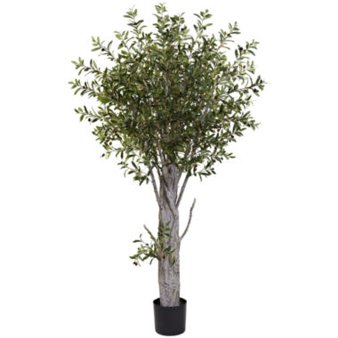 jcpenney.com | Nearly Natural 6-ft. Olive Tree