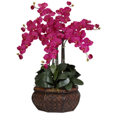 jcpenney.com | Nearly Natural Large Phalaenopsis Silk Flower Arrangement