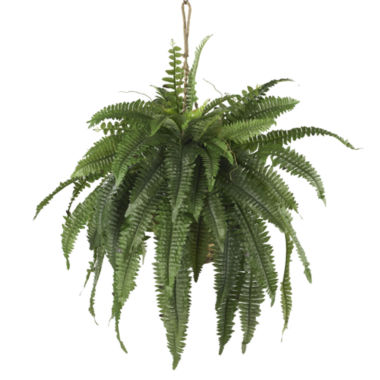 jcpenney.com | Nearly Natural Large Boston Fern Hanging Basket