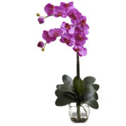 Nearly Natural Double Phalaenopsis Orchid With Vase Arrangement