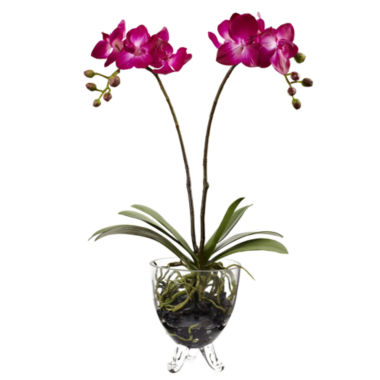 jcpenney.com | Nearly Natural Double Phalaenopsis Elegance Arrangement