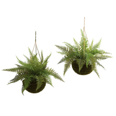 jcpenney.com | Nearly Natural Leather Fern With Mossy Hanging Basket Indoor/Outdoor Set Of 2