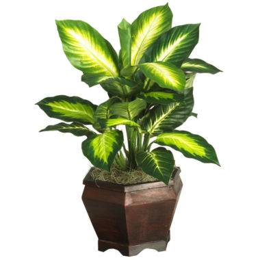 jcpenney.com | Golden Dieffenbachia With Wood Vase Silk Plant