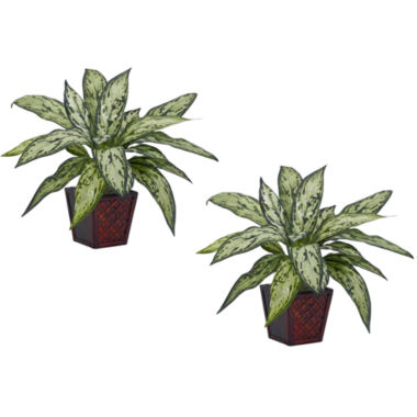 jcpenney.com | Nearly Natural Silver Queen Silk Plant - Set of 2