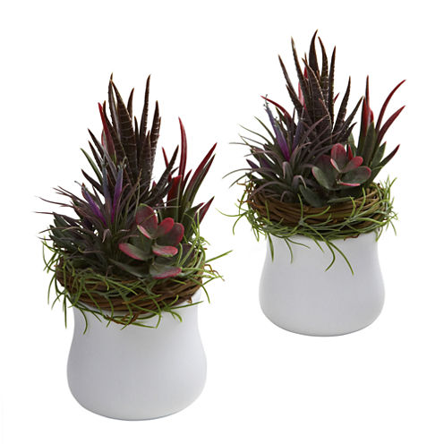 Nearly Natural Mixed Succulent With White Planter Set Of 2