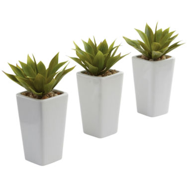 jcpenney.com | Nearly Natural Mini Agave With Planter Set Of 3 White
