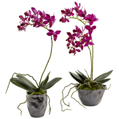 jcpenney.com | Nearly Natural Mini Phalaenopsis With Metallic Vase Set Of 2
