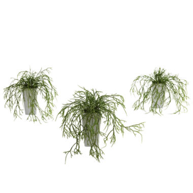 jcpenney.com | Wild Grass With White Vase Set Of 3