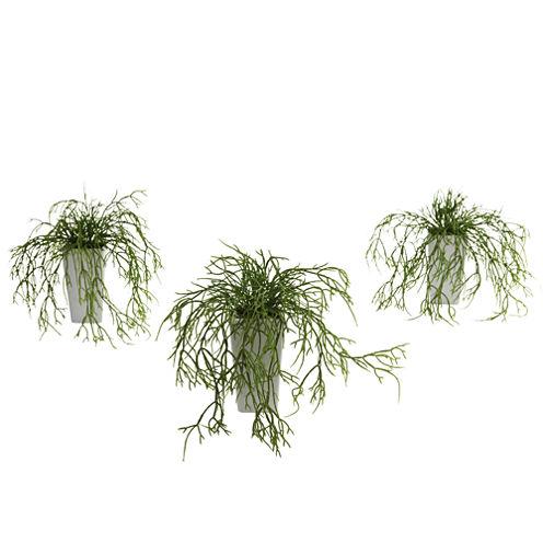 Wild Grass With White Vase Set Of 3
