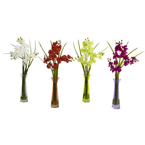 Mini Phalaenopsis With Colored Vase Set Of 4