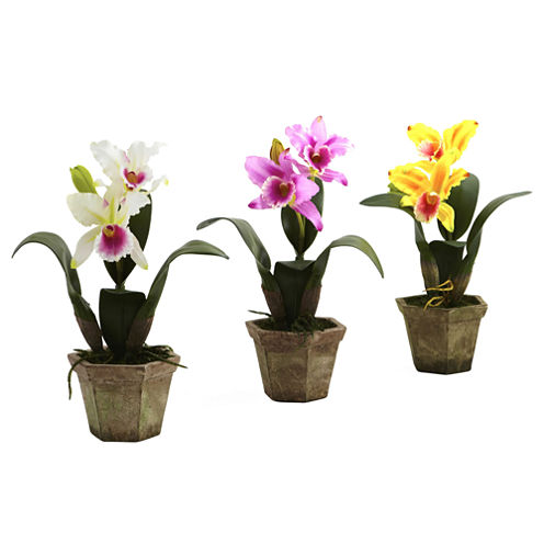 Nearly Natural Cattleya Orchid With Vase Set Of 3