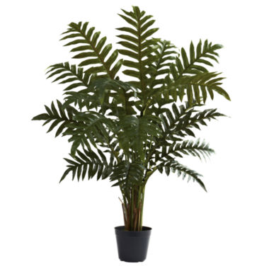 jcpenney.com | 3.5' Evergreen Plant