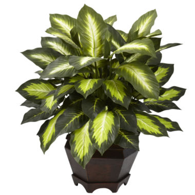 jcpenney.com | Nearly Natural Triple Golden Dieffenbachia With Wood Vase