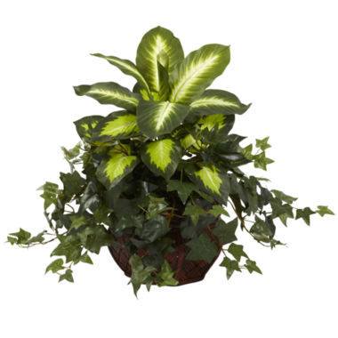 jcpenney.com | Nearly Natural Dieffenbachia & Ivy with Decorative Planter