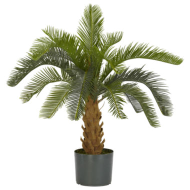 jcpenney.com | Nearly Natural Cycas Silk Plant