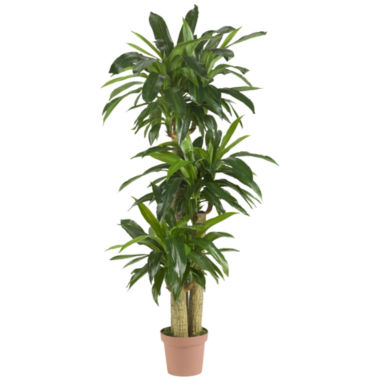 jcpenney.com | Nearly Natural Real-Touch Corn Stalk Dracaena Silk Plant