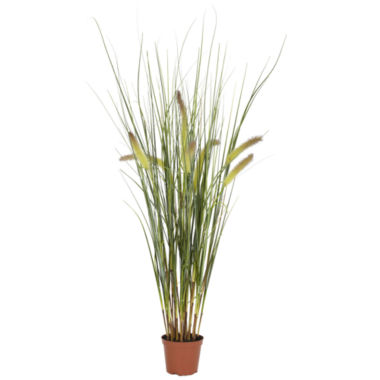jcpenney.com | Nearly Natural 2.5-ft. Grass Plant