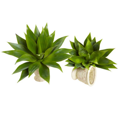 jcpenney.com | Nearly Natural 17 Agave Succulent Plant Set Of 2