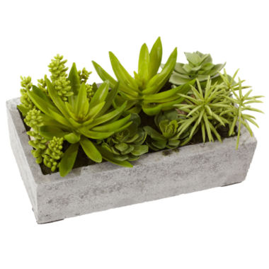 jcpenney.com | Nearly Natural Succulent Garden With Concrete Planter