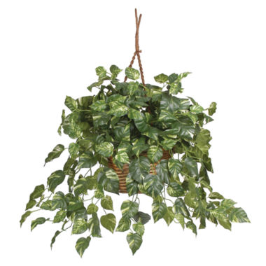 jcpenney.com | Nearly Natural Pothos Hanging Basket Silk Plant