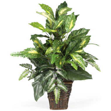 jcpenney.com | Nearly Natural Mixed Greens Silk Plant with Wicker