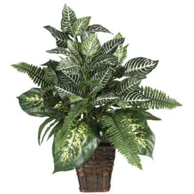 jcpenney.com | Nearly Natural Mixed Greens Zebra Silk Plant with Wicker