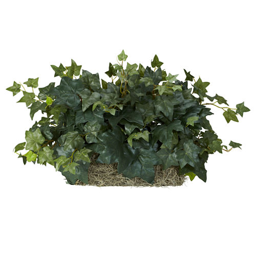 Ivy Ledge Plant Set On Foam Silk Plant