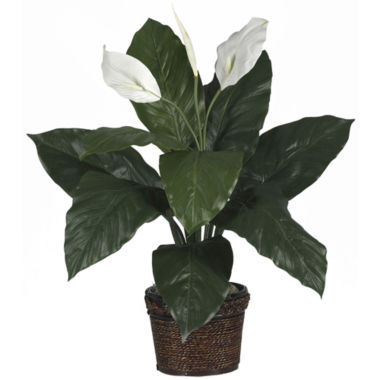 jcpenney.com | Nearly Natural Spathiphyllum Silk Plant with Wicker