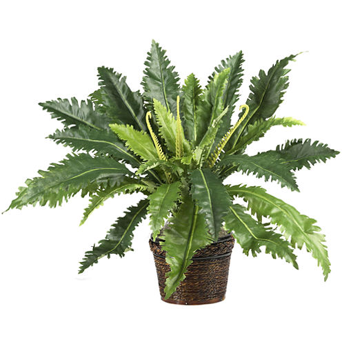 Nearly Natural Marginatum Silk Plant with Wicker Basket