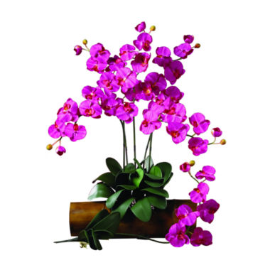 jcpenney.com | Nearly Natural Phalaenopsis Floral Arrangement