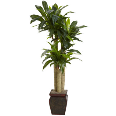 jcpenney.com | Nearly Natural 4.5-ft. Cornstalk Dracaena Silk Plant With Vase Real Touch