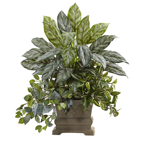 """28"""" Mixed Silver Queen, Wandering Jew & Fittonia With Planter"""
