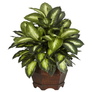jcpenney.com | Nearly Natural Golden Dieffenbachia Silk Plant