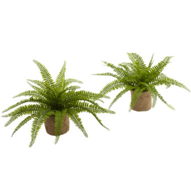 jcpenney.com | Nearly Natural Set of 2 Boston Fern with Burlap Planter