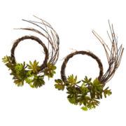 Mixed Succulent Wreath Set Of 2