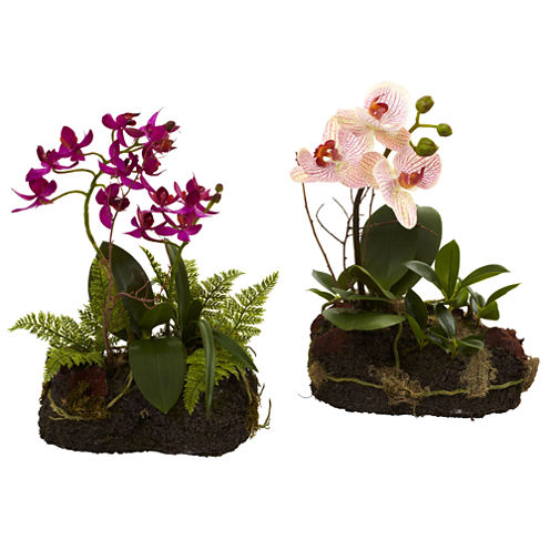 Nearly Natural Orchid Island Set Of 2