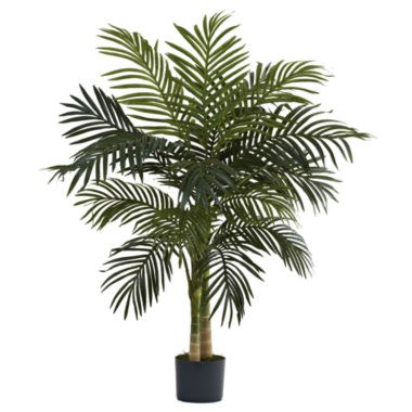jcpenney.com | 4' Golden Cane Palm Tree